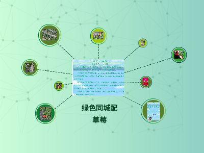 绿色同城配-----草莓 幻灯片制作软件