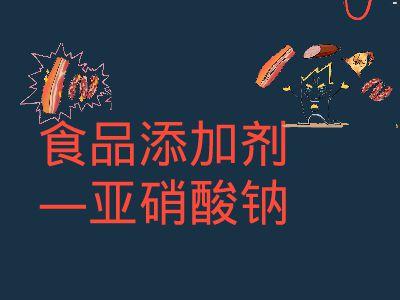 食品添加剂第一组 幻灯片制作软件