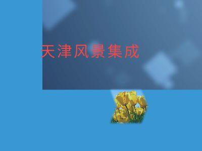 杨帆 幻灯片制作软件