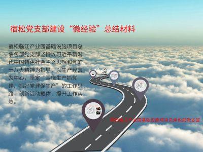 """宿松党支部建设""""微经验""""总结材料 幻灯片制作软件"""