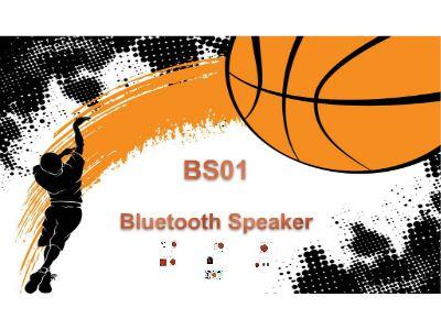 BS01 video 幻灯片制作软件