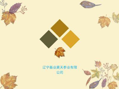 基业昊天 幻灯片制作软件