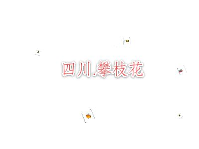 李俊发 幻灯片制作软件