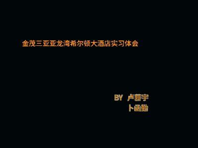 15级酒管专4金茂三亚亚龙湾希尔顿大酒店实习体会 幻灯片制作软件