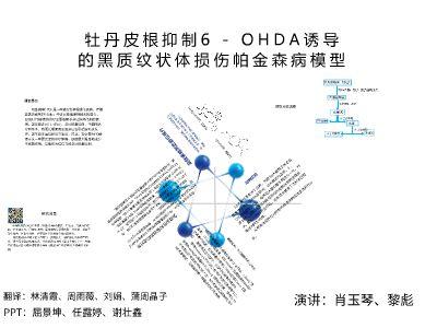 分析化学文献汇报 幻灯片制作软件