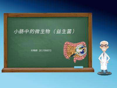 小腸中的微生物